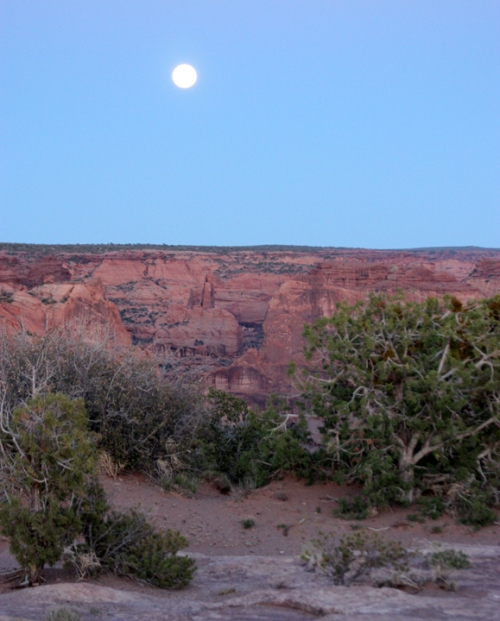 CanyondeChelly4495