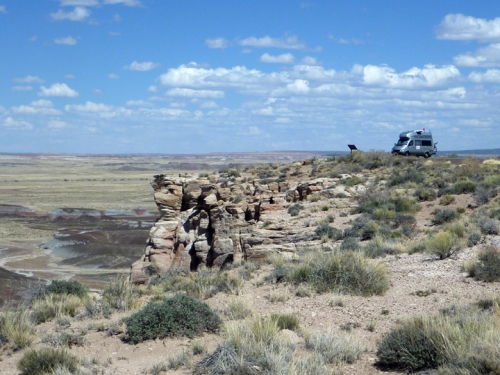 PetrifiedForest0576