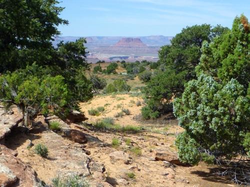 Canyonlands0384
