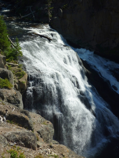 YellowstoneGibbonFalls0327