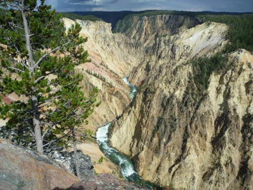 YellowstoneGrandCanyon0455