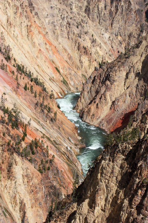 YellowstoneGrandCanyon5223