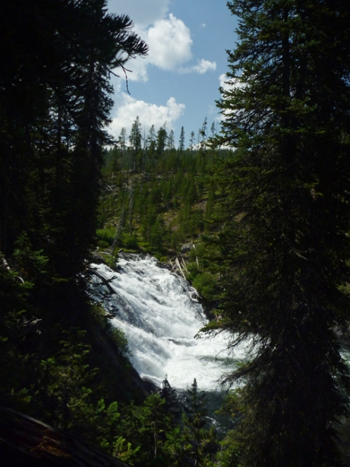 YellowstoneLewisFalls0943