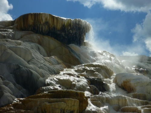 YellowstoneMammothHotSprings0565