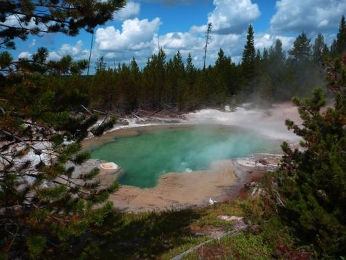 YellowstoneNorrisGeyserBasin0516