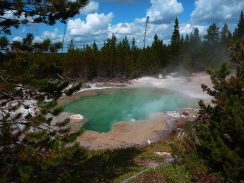 YellowstoneNorrisGeyserBasin0516