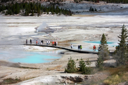 YellowstoneNorrisGeyserBasin5226