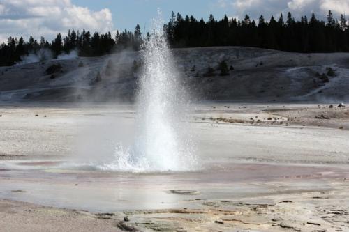 YellowstoneNorrisGeyserBasin5238