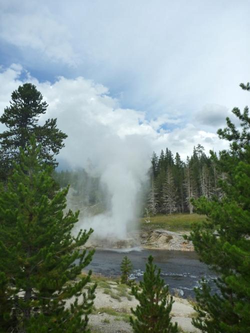 YellowstoneUpperGeyserBasin0183