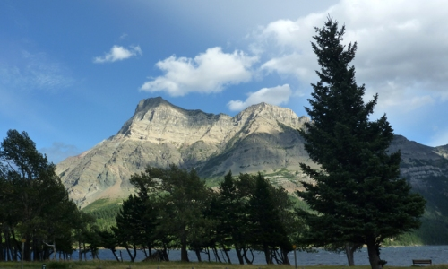 Waterton0116