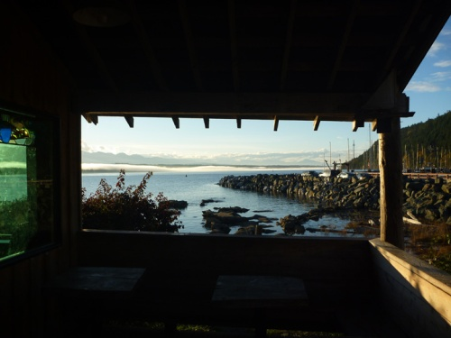 HornbyIsland0039