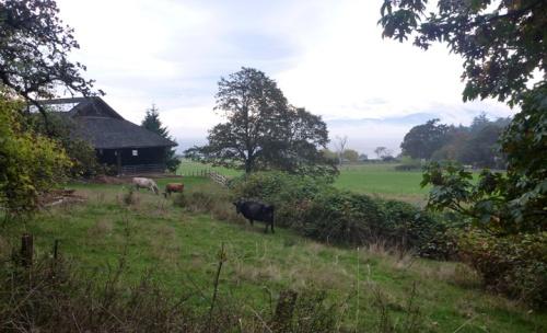 HornbyIsland0129