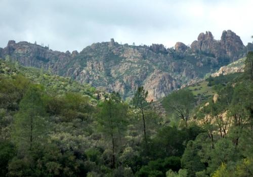 Pinnacles0218