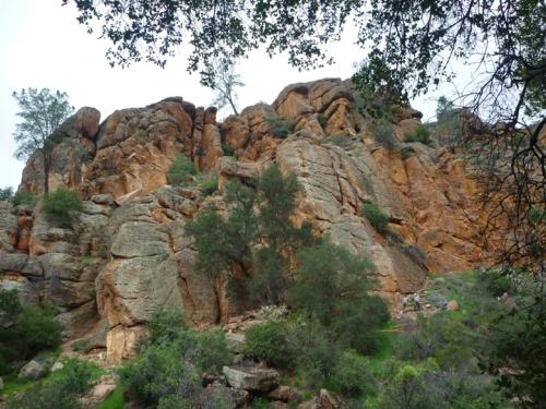 Pinnacles0225