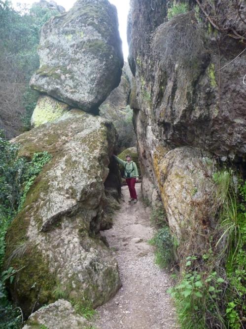 Pinnacles0238