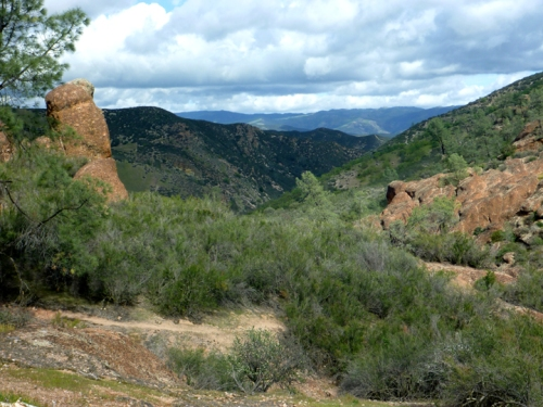 Pinnacles0305