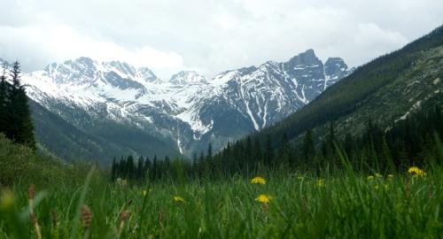 GlacierNPRogersPass0957