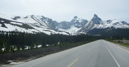 IcefieldsParkway0669
