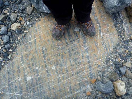 IcefieldsParkwayAthasbasca0686