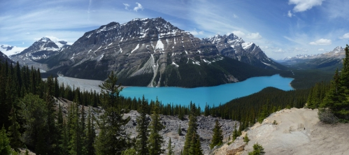 Peyto Lake - All4Pc