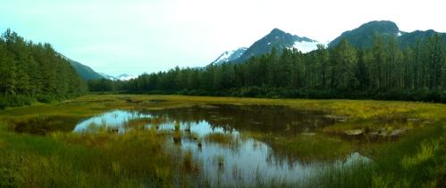 Portage Moose Flats - All2