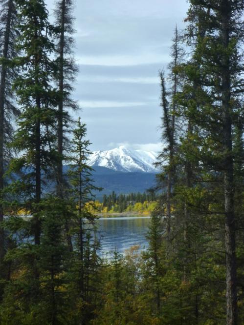 AlaskaHwyReturnMarshLake0869