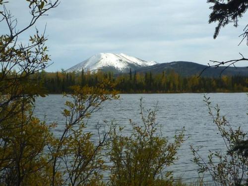 AlaskaHwyReturnSnagJunction0821