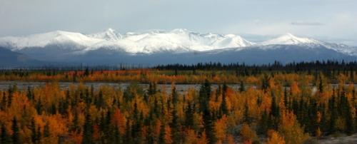 AlaskanHwyReturn6896