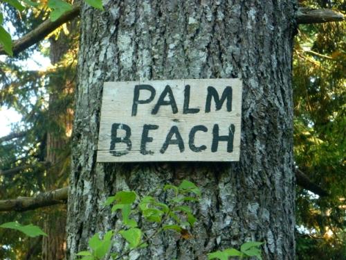 PalmBeach0561