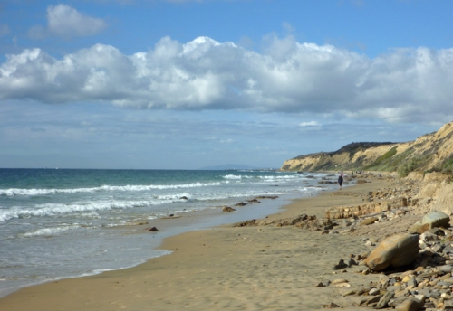 CrystalCove0239
