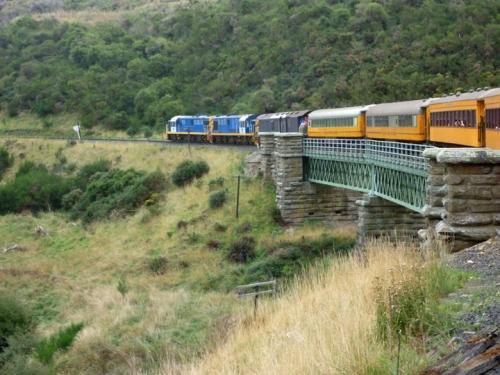 Dunedin0991