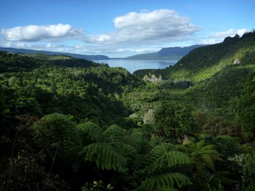LakeTarawera0613