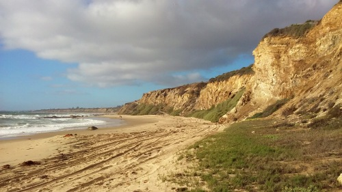 crystalcove1429