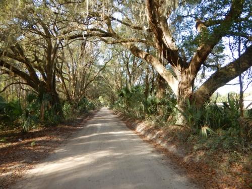 islandgrove1344