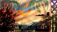 pineisland61018b